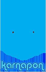 לוגו קרנפון